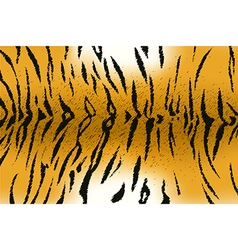 Tigerskin2 vector