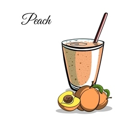 Smoothie ingredient 5 vector