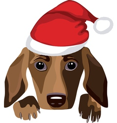 dog wearing a santa claus hat vector image vector image