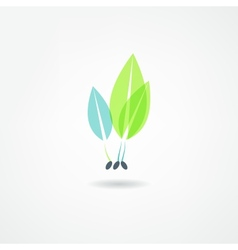 Sprout grain icon vector
