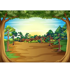 A sunrise at the forest with trees vector image vector image
