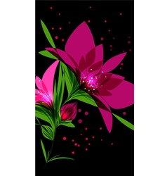 Bright pink flower on black background vector