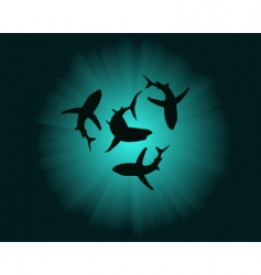 silhouettes of sharks vector image vector image