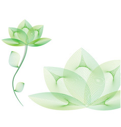 Green spa flower vector