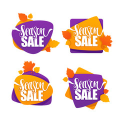 season sale collection of bright autumn vector image