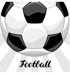 Soccer or football background with ball sports vector