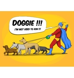 Superhero man and dogs comic book vector image