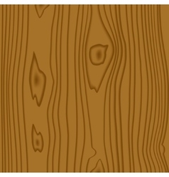 Texture of wood vector
