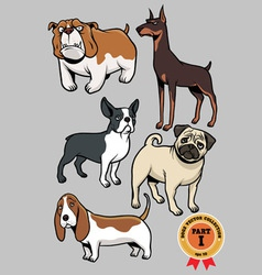 dogs collection part 1 vector image vector image