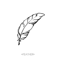 indian Boho feather hand drawn vector image