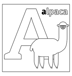 Alpaca letter A coloring page vector image