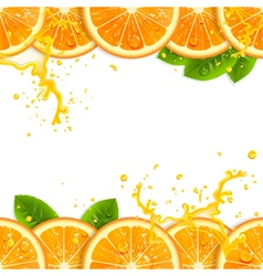 Banner with fresh oranges vector