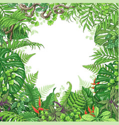 Tropical plants frame vector