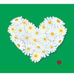 daisy heart 380 vector image