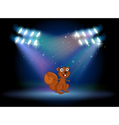 A squirrel at the stage with spotlights vector image vector image