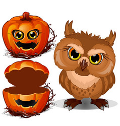 angry owl and halloween scary pumpkin face vector image
