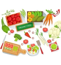 Collection of different fresh organic vegetables vector