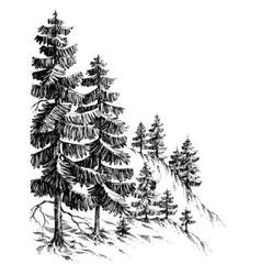 Pine forest winter mountain landscape drawing vector