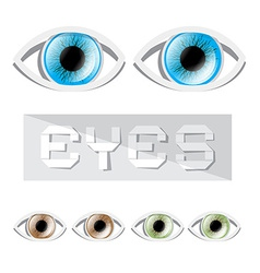 Blue - Green and Brown Eyes Set vector image