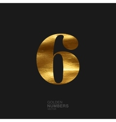 Golden number 6 vector
