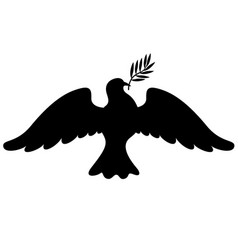 dove with branch silhouette vector image