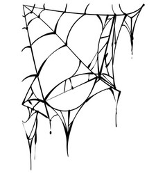 Black torn spider web on white background vector