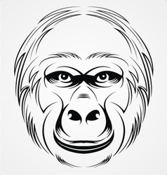 Gorilla vector head - photo#23