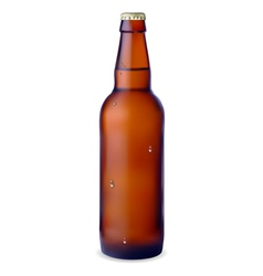 Dark bottle of beer vector image