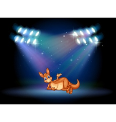 A kangaroo at the stage with spotlights vector image vector image