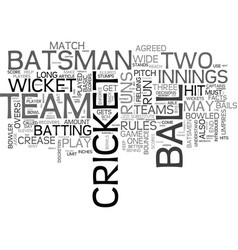 Basic facts and rules of cricket text word cloud vector