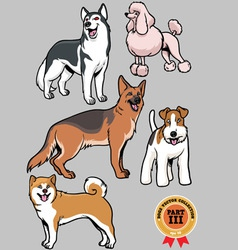 Dogs collection part 3 vector image