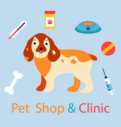 Banner with cute dog with pet medicine and stuff vector