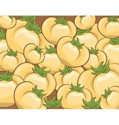 Fresh Yellow tomatoes pattern vector image
