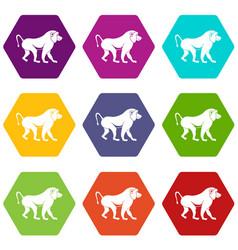 Japanese macaque icon set color hexahedron vector