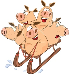 Funny piglets on sled vector