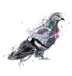 Colored hand sketch of a pigeon vector