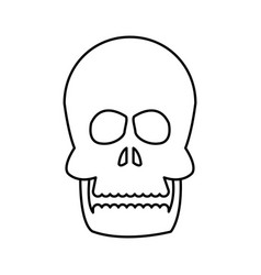 Human skull bone care healthy line vector