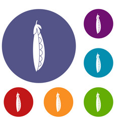 fresh peas icons set vector image