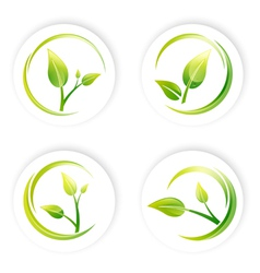 Green sprout leaf vector