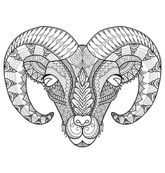 Horn sheep coloring vector