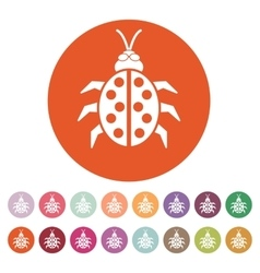 The ladybug icon ladybird and bug beetle symbol vector