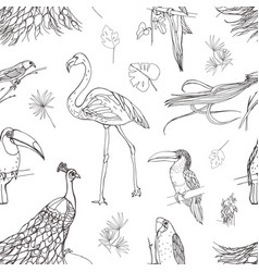 beautiful seamless pattern with tropical birds and vector image vector image
