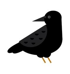 Black crow raven bird vector