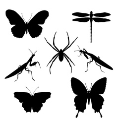 set of silhouettes of insects vector image vector image