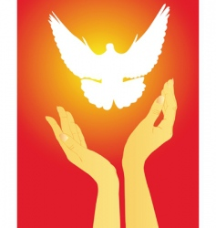 hands releasing a white dove vector image vector image