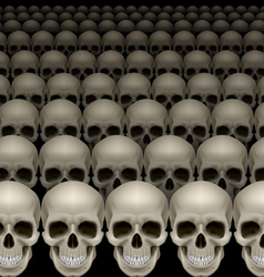 Rows of skulls vector