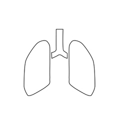 Human lungs icon outline style vector