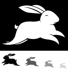 Rabbit vector