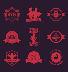 Fitness gym vintage logos emblems vector