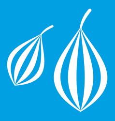 Trachyspermum ammi icon white vector